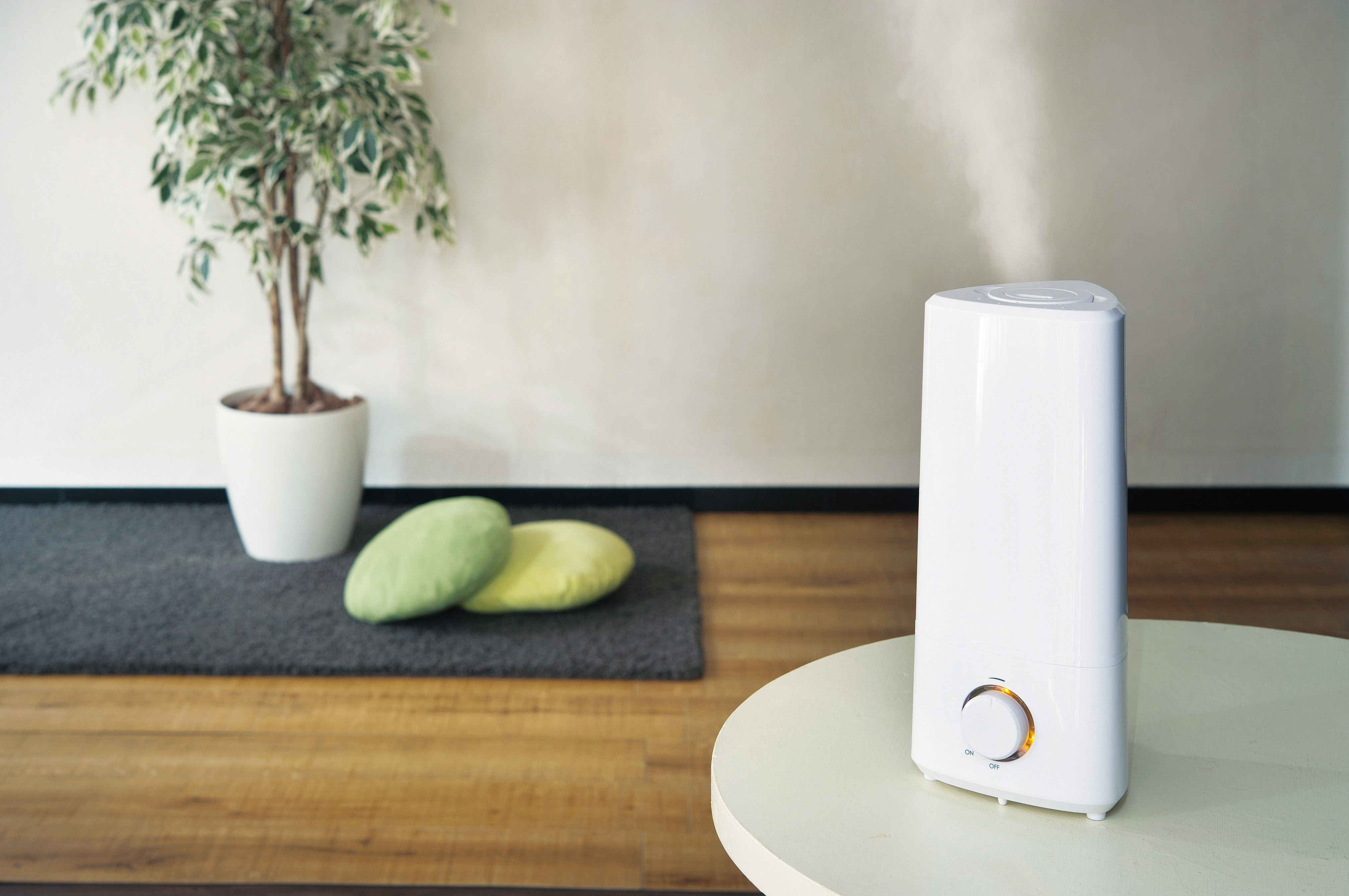 「値段・電気代・見た目」で選ぶ一人暮らしにおすすめの加湿器と種類別の特徴解説